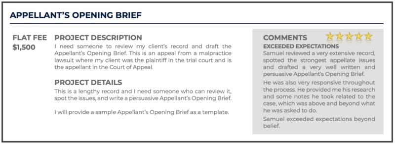 Appellate Brief Writer: Project Description and Project Details